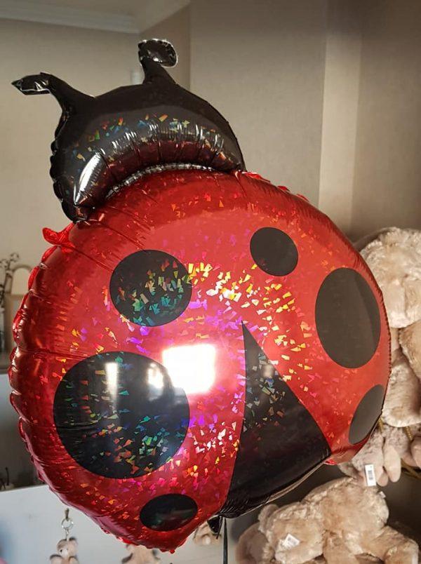 Ballon Ballonnen lieveheerbeestje verjaardag Sint-Truiden Hoeselt
